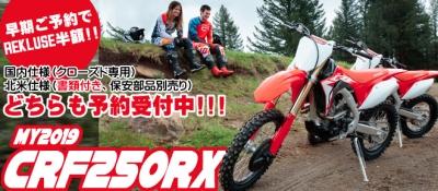 CRF250RX2019.jpg