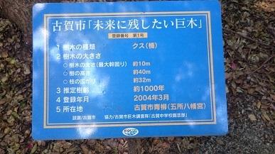DSC_5838mini.jpg