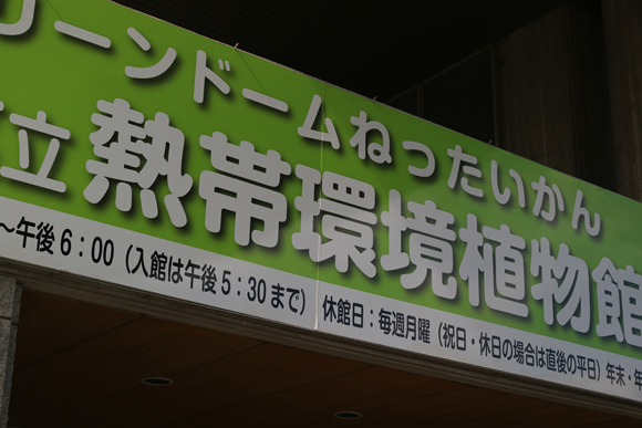 IMG_271.jpg