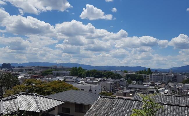 京都市の11
