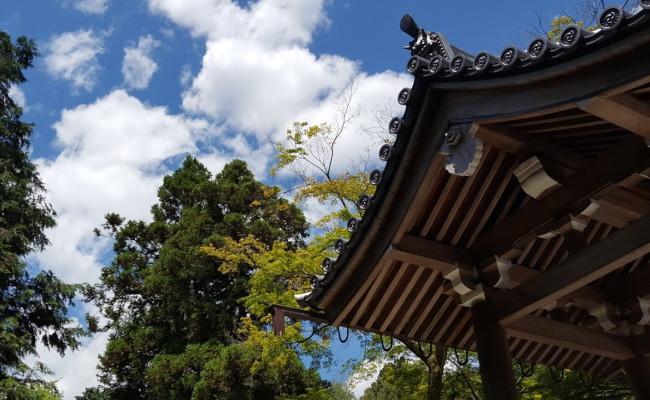京都市の13