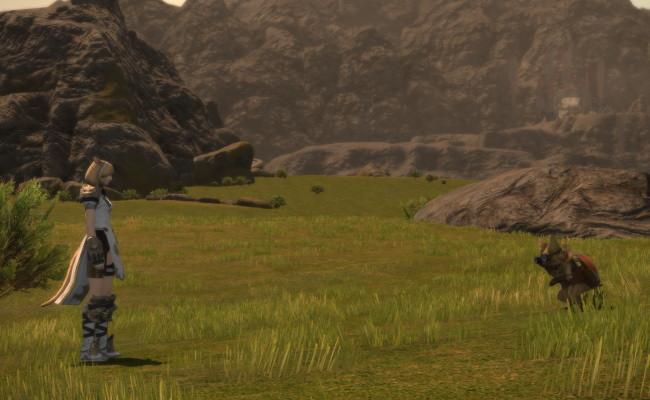 リオレウス狩猟戦2