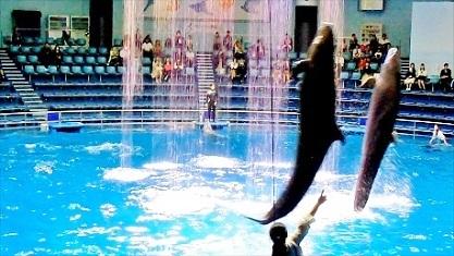 水かけジャンプ