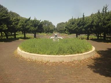 aruki331.jpg