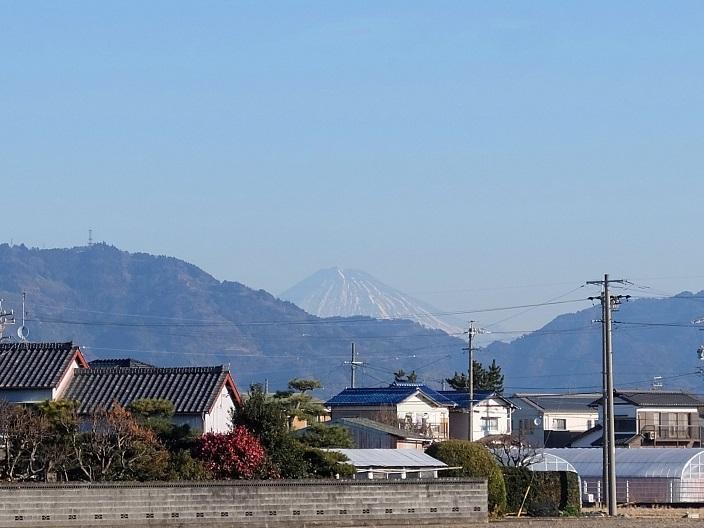 藤枝朝うー冷8