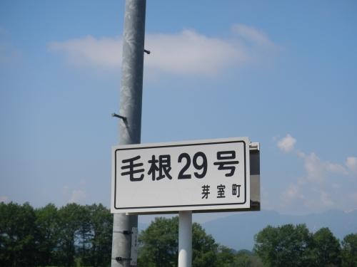 DSCN5602.jpg