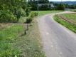道路沿いの草刈り