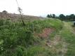 ため池の土手の草刈り
