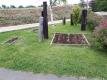 芝生花壇の花苗