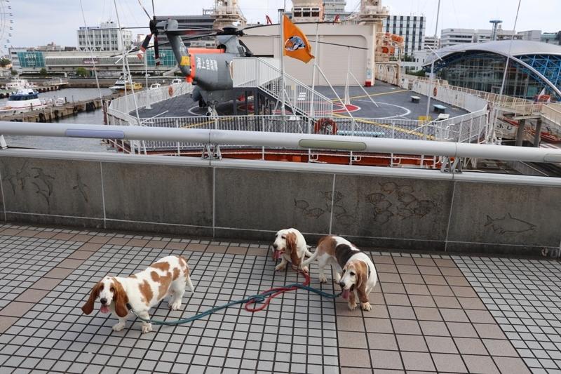 名古屋港0012