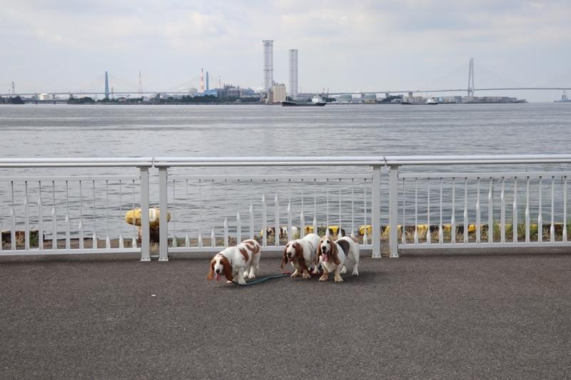 名古屋港0018