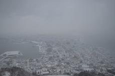 函館山からの景色①