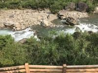 川の水はかなりきれい180714
