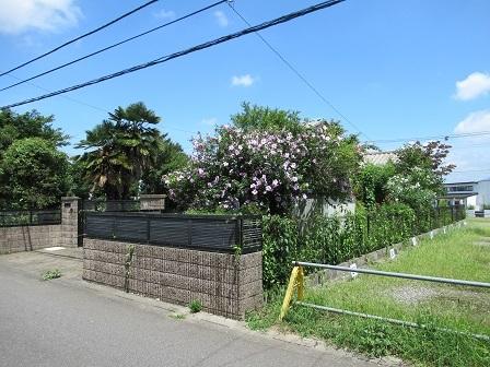 花園3-17(分割)