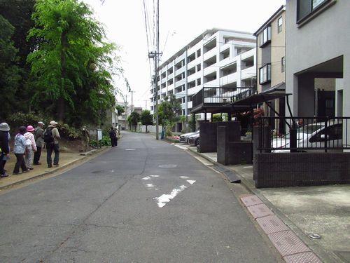 大山街道3