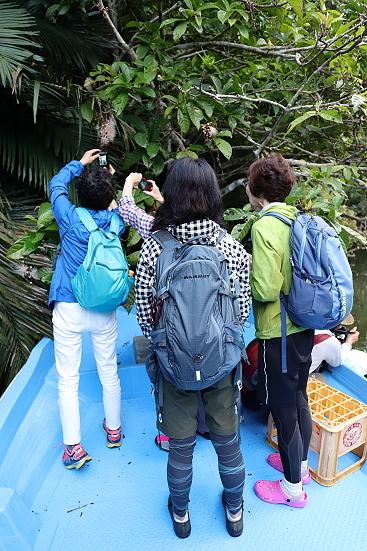 18-06-28_iriomote-okinawa-0195.jpg