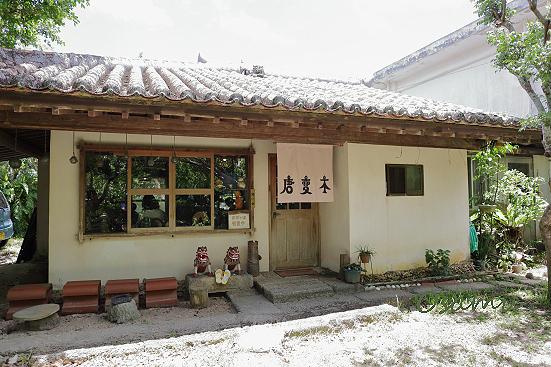 18-06-29_iriomote-okinawa-0253.jpg