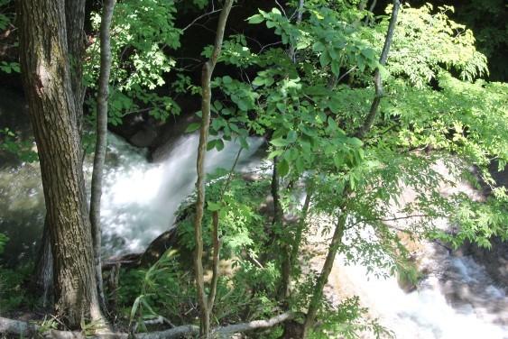 滝見台からの夫婦滝