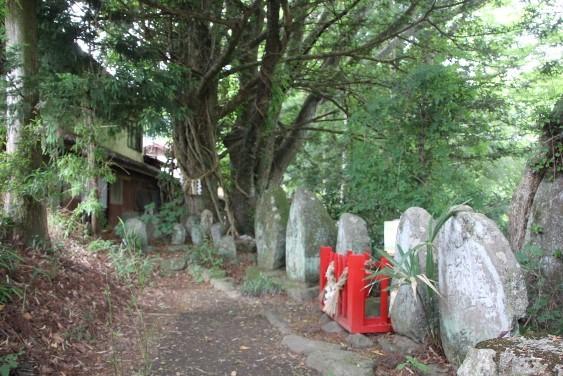 石碑と御神木