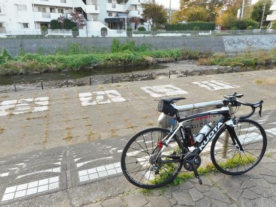 18_11_03-09miuraichi.jpg