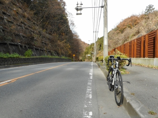 18_12_09-06wadatouge.jpg