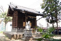 180404雷神社のスダジイ⑤