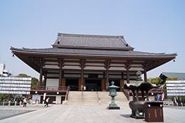 180404西新井大師のクスノキ