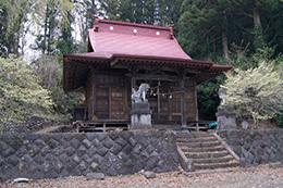 180417荘田神社大イチョウ⑤
