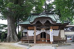 180704鹿島御子神社の大欅⑨