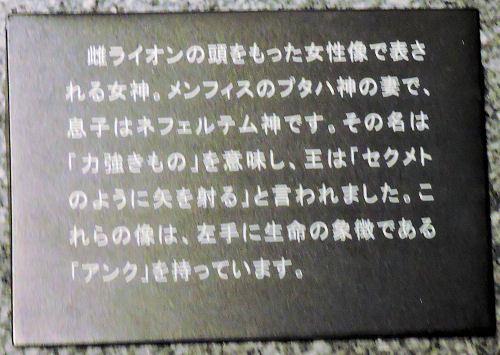 180626touhaku56.jpg