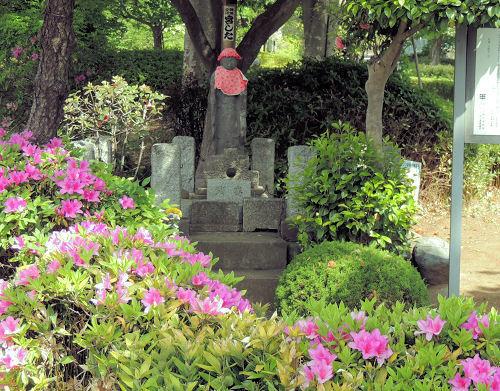180716sayama13.jpg