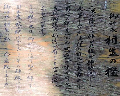 180731muna52.jpg