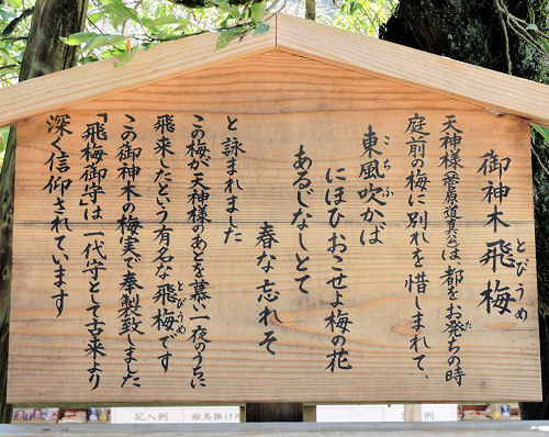 180802dazaifu80.jpg