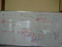 DSC_0591.jpg