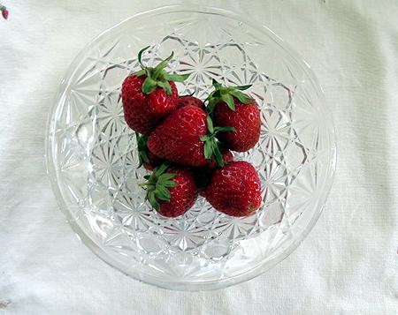 57 イチゴ初摘み