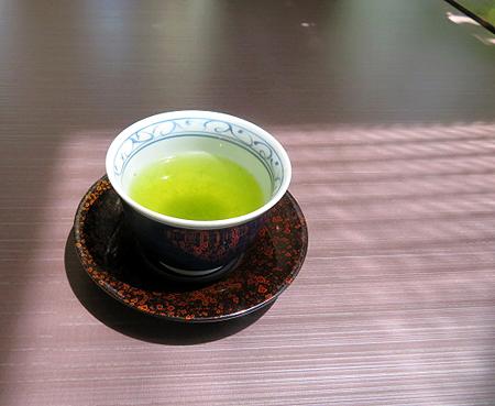 528新茶