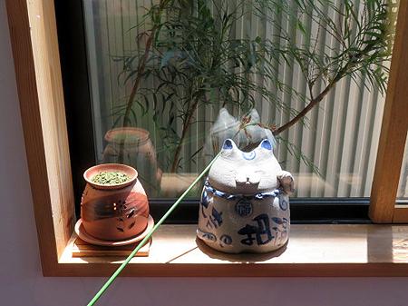 528茶香炉