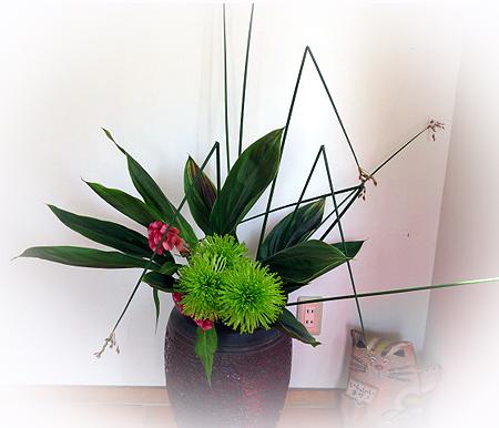 528茶々テラスお花