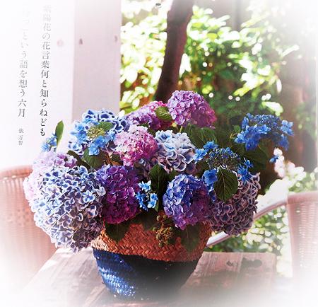 61六月花カレンダ-
