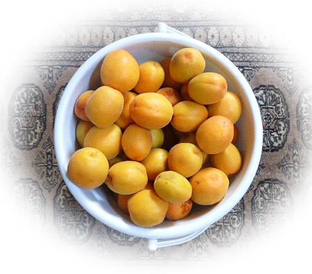 611杏収穫