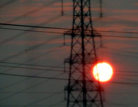 722サバンナの太陽?