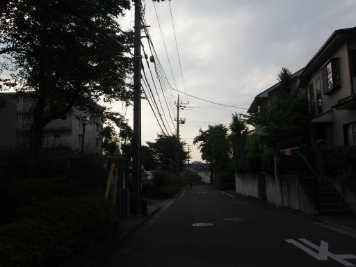 20180609・ミニ散歩にゃ~にゃ~09