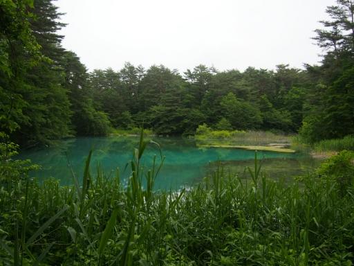 20180616・磐梯旅行記ベスト16・五色沼青沼