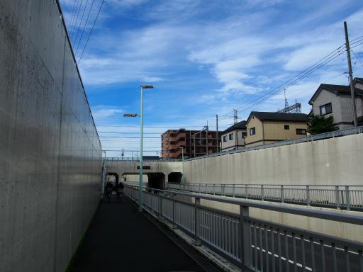 20180708・近所朝の散歩12