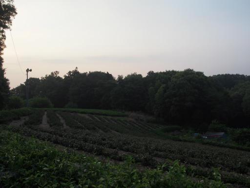20180715・早朝狭山湖の空07・05:32