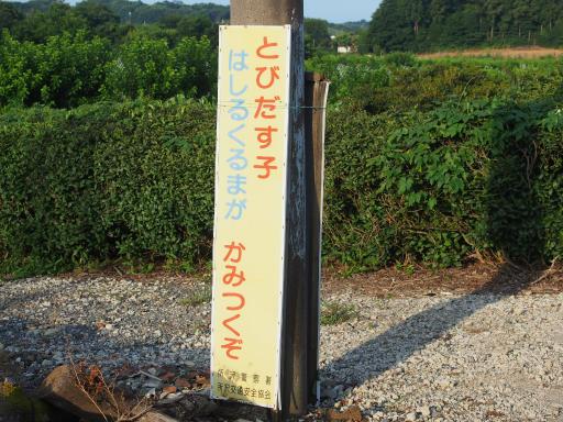 20180714・狭山ヶ丘散歩1-12
