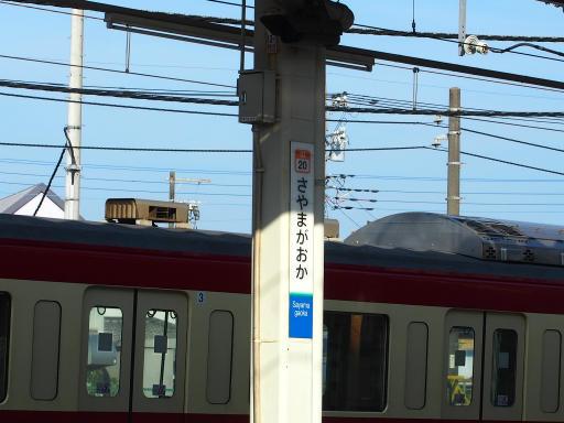 20180714・狭山ヶ丘散歩2-18