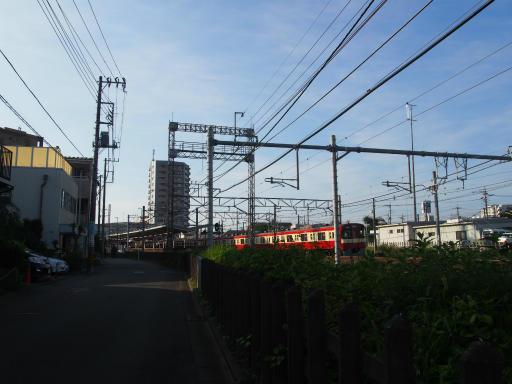 20180714・狭山ヶ丘散歩2-20