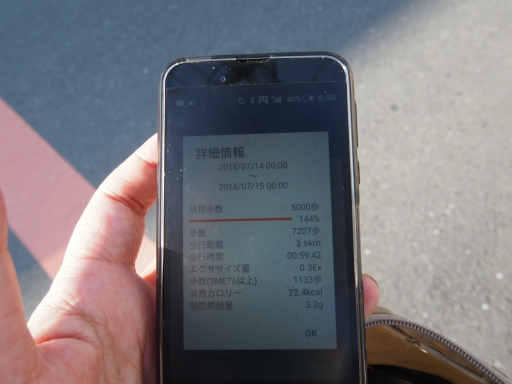 20180714・狭山ヶ丘散歩2-27・中