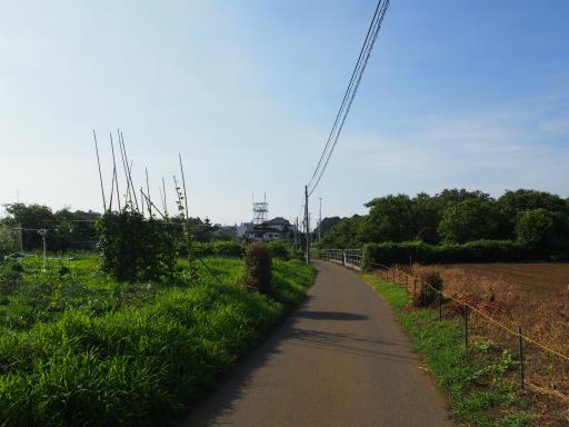 20180714・狭山ヶ丘散歩3-17